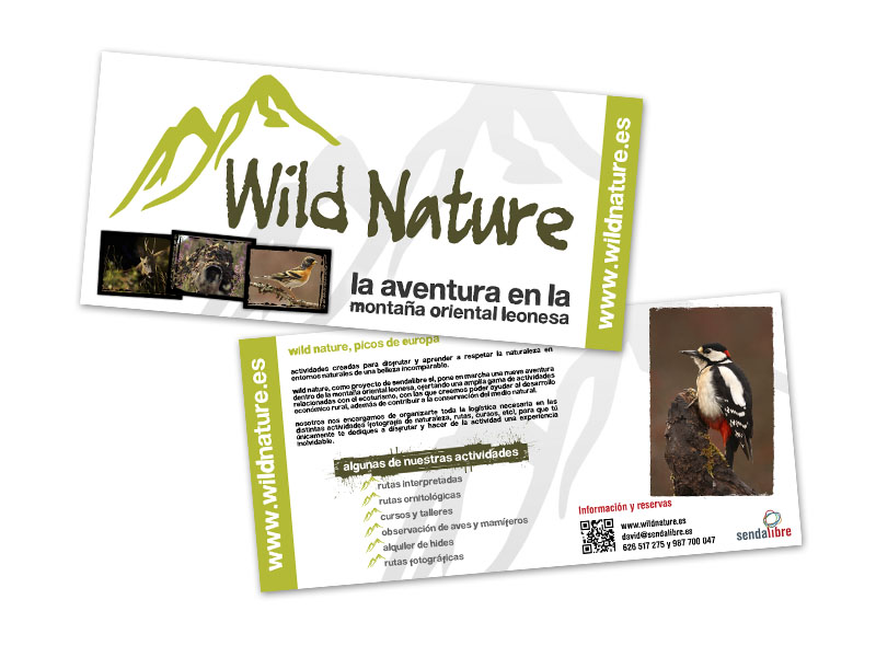 wild_nature_flyers